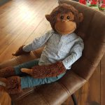 Señor Mono heeft een stimulerende functie en is zeer effectief bij jonge kinderen.
